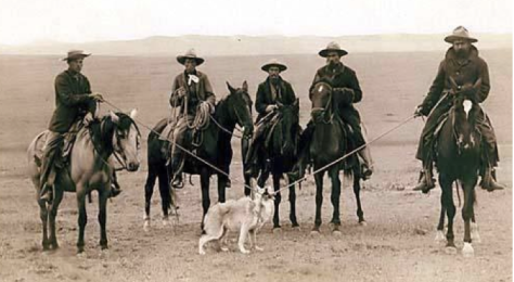 Cowboys and Wolf Low Res